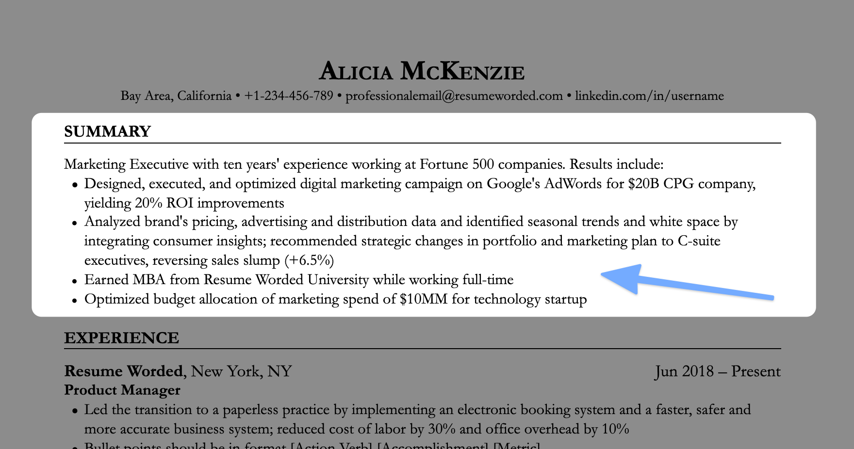 Resume summary example on a marketing executive's resume (screenshot)