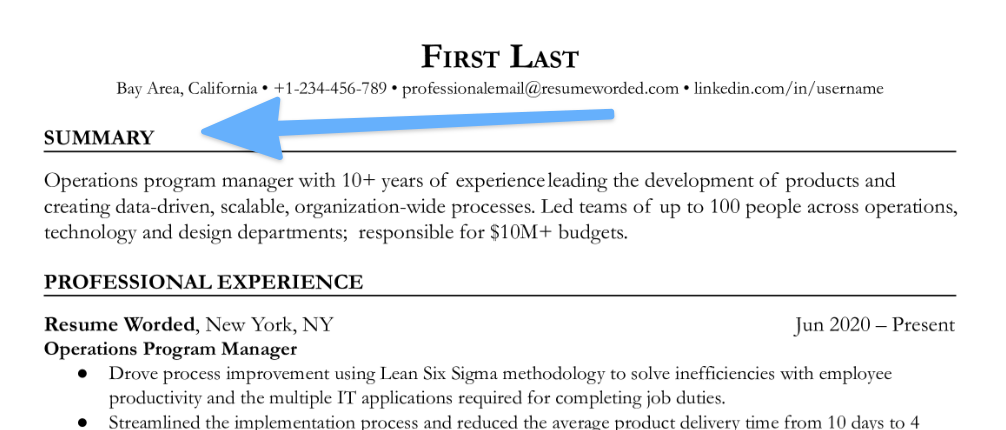 Section title for your resume summary section